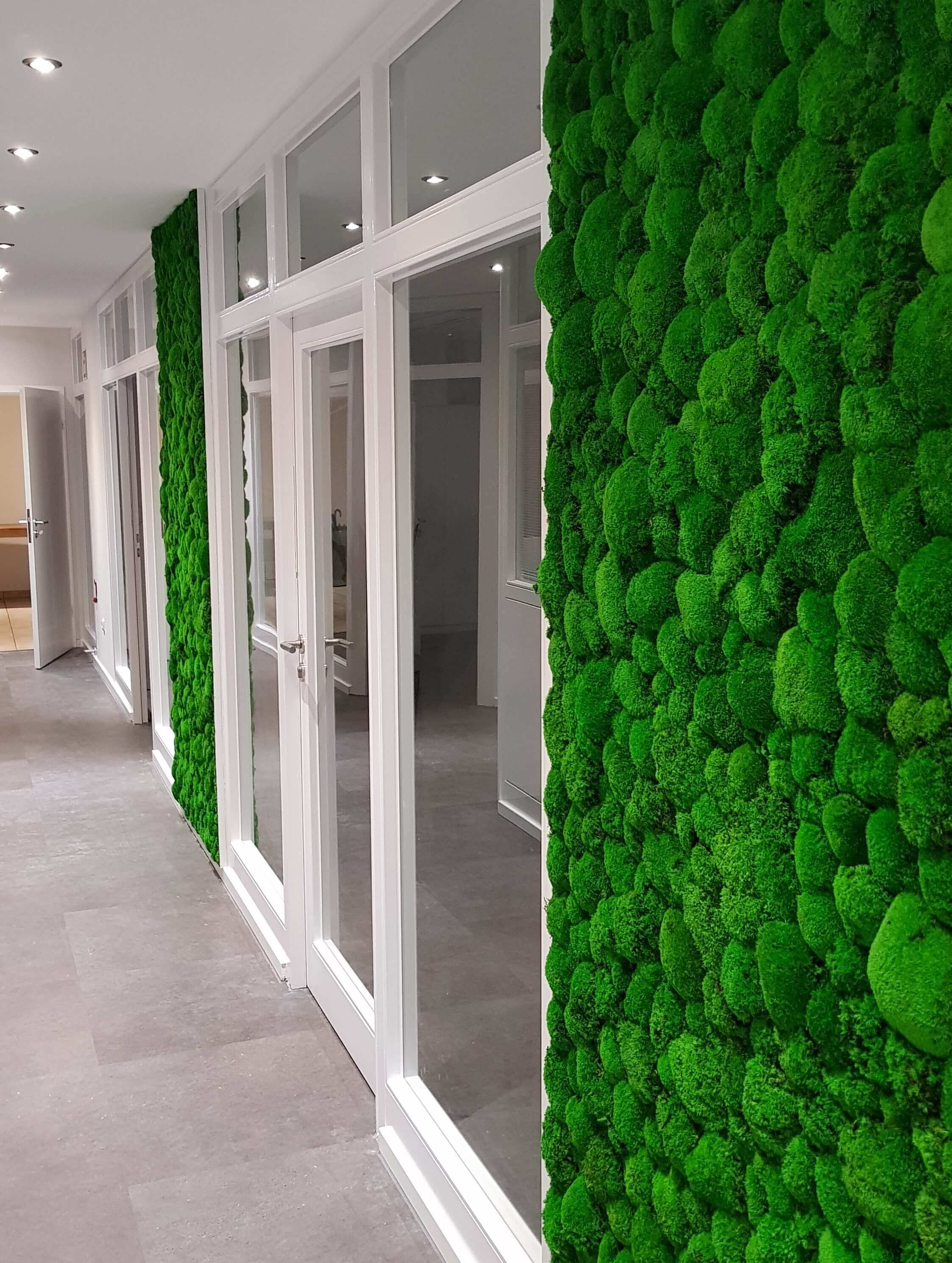 Ball moss walls for Wisag, Germany
